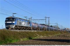 JRF_EF210-142GB_021214 (Catcliffe Demon) Tags: japan railways bobobo jrf momotaro electriclocomotive jrfreight jotc saitamaprefecture jr 1500vdc 1500v ef210100 japanrailimages2014