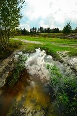 Wahner Heide mit UWW-4945 (c_iglo) Tags: kln ausflug heide 2014 uww wahner wahnerheide