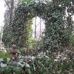Friedhof Olschany