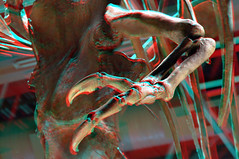 T-Rex-Claw-3D-09-100%-Anaglyph-(red-cyan-glasses-required) (Aaron & Radhika) Tags: camera new old red eye art monster museum photoshop t skeleton fossil skull design three photo stereoscopic 3d big scary nikon artist photographer cross post dinosaur designer reptile space teeth year aaron captured cyan optical anaglyph sharp lizard stereo zealand illusion photograph adobe wellington million bones papa spatial years te eyed dslr rex effect processed depth 67 trex fossils carnivore tyrannosaurus dimensions dimensional cs5 openshaw d3100