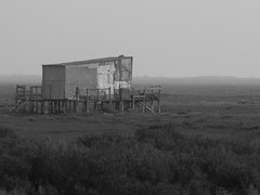 Informal construction (cyclingshepherd) Tags: mist luz portugal monochrome misty fence grey december torre gray shed salt shack marsh algarve tavira ares 2014 s100fs cyclingshepherd torredeares