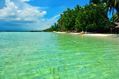 Paradise (free3yourmind) Tags: sea green beach water palms island paradise crystal philippines bohol