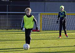 _IMG5172 (Henk de Regt) Tags: goal 4x4 d f1 f e e1 voetbal wedstrijd d1 bal loenen voetbalveld loenermark