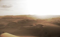 Dunes of Ica (Wild Constraint) Tags: sunset summer peru yellow sand desert dunes heat sanddunes ica huacachina