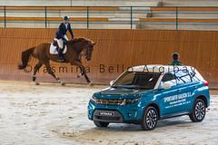 (yasminabelloargibay) Tags: horse caballo cheval grey bay corua mare pony chestnut cavalier suzuki horseshow cavalo pferd canter hest paard horserider gelding hipica hipismo casasnovas