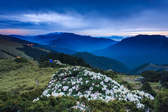 (samyaoo) Tags: park longexposure light sunset sea sky mist tree car fog clouds star nationalpark taiwan trails peak east  galaxy national    milkyway  seaofclouds tarokonationalpark  nantou          hehuanshan                   hehuanmountains