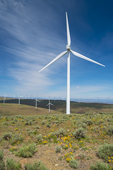 DSCF7140 (jiggumbob) Tags: power washingtonstate turbine windturbine sagebrush windpower windtower sagesteppe wildhorsewindandsolarfacility