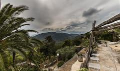 Between Sun & Haze (Christian Ferrari) Tags: travel trees light sky sun white green clouds haze