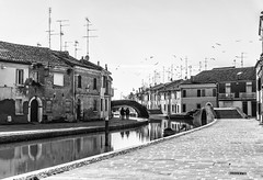 Birds (FrancescoPalmisano) Tags: blackandwhite bw scale monochrome birds stairs river boats bridges uccelli oldtown antenne channel biancoenero canale antennas centrostorico comacchio stormo ponti