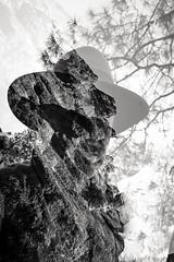 taciturn echo (Super G) Tags: california trees blackandwhite bw rock forest doubleexposure scs talus paicines incameradoubleexposure nikon278