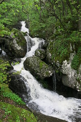 Vitosha Mountain - Boyana Waterfall (upper part) (lyura183) Tags: mountain waterfall sofia bulgaria vitosha  boyana     boyanawaterfall