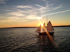 pirates (Marissa Shae) Tags: boat iphone sunset dusk clouds bluesky sky horizon newport sail sailing sailboat ocean bay landscape nature scenery rays sunrays sails stillwater sun