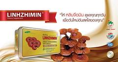 หลินจือมิน เห็ดหลินเจือแดง Linhzhimin