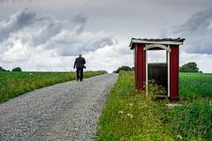 Man walking down a road (PeterSundberg66 former PeterSundberg65) Tags: road red sky house selfportrait man green nature clouds walking sweden outdoor falkping