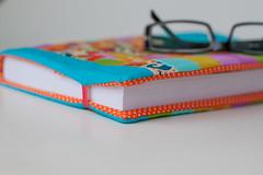 RicaCapa #7 (Canela Cheia) Tags: blue azul book colorful read cover ler fabrics colorida textil retalhos patcwork capalivros