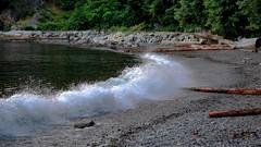 Shore Breaker (Images by Christie  Happy Clicks for 2016!) Tags: park seascape canada beach coast nikon waves bc shoreline shore seashore saltwater whytecliffpark d5200