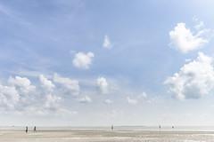 The vast land (Vinith GR) Tags: life travel people india clouds landscape south ngc culture dry wideangle drought minimalism cyclone tamil tamilnadu rameshwaram southindia southernindia hardlife dhanushkodi barrenland flickrtravelaward sony1018mm sonya6000 vinithgrphotography