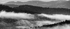 Early morning in the Bavarian forest (Akito-X) Tags: morning white black clouds forest de bayern deutschland bavaria view wolken hills wald weiss blick schwarz hgel sumava bayrischerwald ammorgen philippsreut canoneos7dmarkii