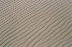 rhythm (pjmuncy) Tags: 35mm analog film sand texture abstract