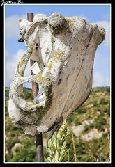 Sinus (jemonbe) Tags: sinus asa valledeasa jacetania jaca jemonbe estarrn huesca pirineos pirineoaragones