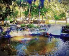 https://foursquare.com/v/frim-kepong/51f5ef30498e76b17de190b3 #trip #travel #holiday #outdoor #green #water #garden #park #Asia #Malaysia #kualalumpur #kepong #frim # # # # # # # # # (soonlung81) Tags: trip travel holiday outdoor green water garden park asia malaysia kualalumpur kepong frim