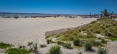 Hotel del Coronado Beach - Coronado CA (mbell1975) Tags: ocean california ca usa beach del america island hotel coast us sand san unitedstates pacific sandiego diego calif cal american coronado