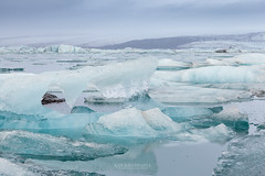 Iceberg in Jokulsarlon Glacier Lagoon, Iceland (Kanonsky) Tags: snow arctic beautiful blue cold environment europe famous floating freeze glacial glacier ice iceberg iceland jokulsarlon lagoon lake landscape melting nature polar sea travel white