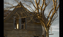 Nothing is Exempt (Whitney Lake) Tags: abandoned house kansas dead tree decay rurex urbex