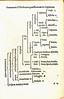 Freig-Chart-1576 (melindahayes) Tags: 1576 bj211f741576 freigjohannesthomas quaestionesheōthinaikaideilinai henricpetrisebastian octavoformat latin