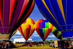 The Great Prosser Balloon Rally (otterdrivernw) Tags: balloonists ballooning hotairballoons balloon
