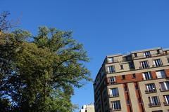 Parc Montsouris @ Paris (*_*) Tags: paris france europe city autumn fall automne 2016 october sunny thursday morning parcmontsouris park nature garden