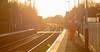 It's a long walk to Toton (kevaruka) Tags: uk greatbritain autumn england sun sunshine train canon flickr unitedkingdom trains 5d softfocus frontpage britishrail nottinghamshire sunnyday 2014 freightliner networkrail fiskerton canon5dmk3 5dmk3 5d3 5diii thephotographyblog canon70200f28ismk2 canoneos5dmk3 ilobsterit