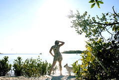 (e m i l i e.) Tags: portrait dog beach gulfofmexico mixed florida breed estero dogbeach fortmyersbeach loverskey bonitabeach blackisland littlehickoryisland