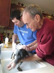 December 24, 2014 (14) (gaymay) Tags: california gay dog love happy bath desert palmsprings christmaseve triad ozmo