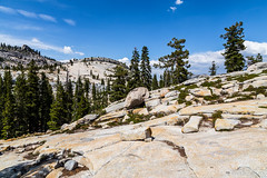 Yosemite Trip - August 2014 - 173 (www.bazpics.com) Tags: california park ca cliff mountain lake rock point view unitedstates flat hill tunnel national valley yosemite granite tenaya barryoneilphotography omsted