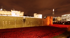 IMG_9497 (Photo Smiles :)) Tags: london tower poppies