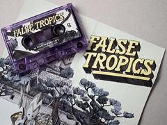 "False Tropics ""What Remains"" (Philipp Zurmoehle) Tags: music art illustration dark logo artwork coverart tape cover mystical hiphop hip hop cassette tropics false beats handdrawn logotype foldout whatremains falsetropics"