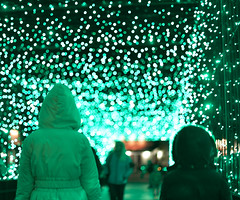 Green Tunnel Walk (JasonCameron) Tags: christmas xmas city lake holiday cute kids fun zoo lights utah play salt tunnel celebrate decorate hogle