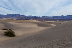 Death Valley Trip - Nov 2014 - 253 (www.bazpics.com) Tags: california park ca trip november winter usa tree america point death us sand unitedstates desert joshua weekend dunes saturday visit national mesquite crater valley deathvalley zabriskie ubehebe 2014 theraceway barryoneilphotography