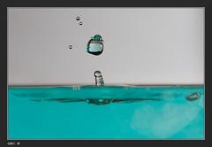 IMG_5600-1 (Tof_Man13) Tags: sculpture color macro art water speed canon photography droplets artwork waterdrop eau wasser drop fluid 7d droplet splash liquid waterdroplets couleur goutte highspeed collision wassertropfen tropfen colonne liquide gouttes waterart arduino colorant droplette gouttedeau fluide gouttesdeau liquidart openflash gouttelettes liquidsculpture splashart hautevitesse liquidflow dropondrop hightspeed artdrops waterdropart liquiddrop watterdrop liquidscupture waterartcanon