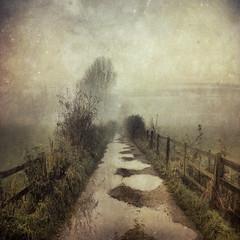 Oblivion (Sarah Jarrett) Tags: winter rain landscape path puddles textured memoriesbook