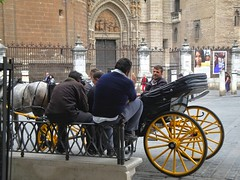 Waiting for a fare. Plaza del Triunfo Seville. (robin denton) Tags: street people horse sevilla spain sitting carriage cathedral candid streetscene seville andalucia espana sit andalusia seated cathedralcity gothiccathedral peoplesitting peopleseated