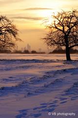 skyline Frankfurt 2 (Vici1806) Tags: schnee winter snow cold ice skyline sunrise warm frankfurt wonderland sonnenaufgang