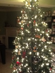 """2014 Christmas Tree • <a style=""""font-size:0.8em;"""" href=""""http://www.flickr.com/photos/109120354@N07/16094184682/"""" target=""""_blank"""">View on Flickr</a>"""
