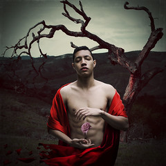 Decay of Flesh (Carlos Castaeda') Tags: red portrait selfportrait mountains flower tree texture me nature rose flesh photoshop dark painting blood shadows darkness skin decay surrealism fabric baroque rococo fineartphotography conceptualphotography redfabric brookeshaden alexstoddard