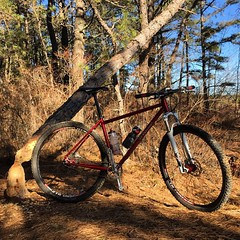 Epic ride in the pines today. #busybeaver #weavercycleworks #custombicycles #29er #ss4life