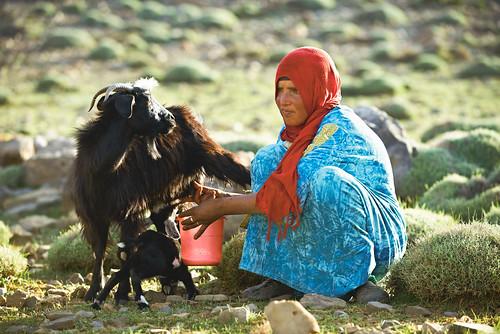 Unterwegs mit der Nomadenfamilie