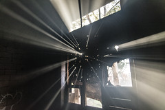 Haunted window (Alessandro Vecchi) Tags: light italy plants rome roma building abandoned window hospital graffiti ruins europa europe italia devils ghost finestra horror palazzo piante luce diavolo manicomio rovine ospedale satanismo abbandonato fantasmi parcodellamarcigliana