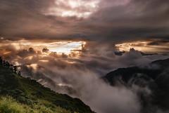 Albizzia julibrissin mountain, Taiwan  ( (Morris)) Tags: blue sunset sky bw orange cloud green car yellow nikon oldstyle ngc taiwan      tw                    108k    d7100