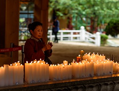 Untitled (TigerPal) Tags: woman temple spring flickr candle buddhist faith prayer buddhism korea korean seoul fis bongeunsa buddhasbirthday bongeuntemple flickrinseoul